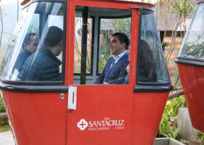 Paseo en Teleférico por el Viñedo Santa Cruz